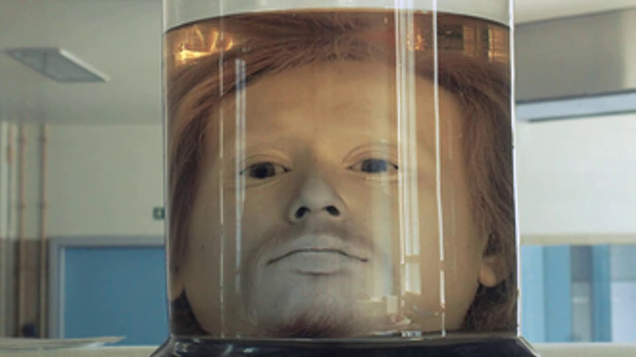 Diogo Alves' head preserved in a jar in formaldehyde solution, in the University of Lisbon