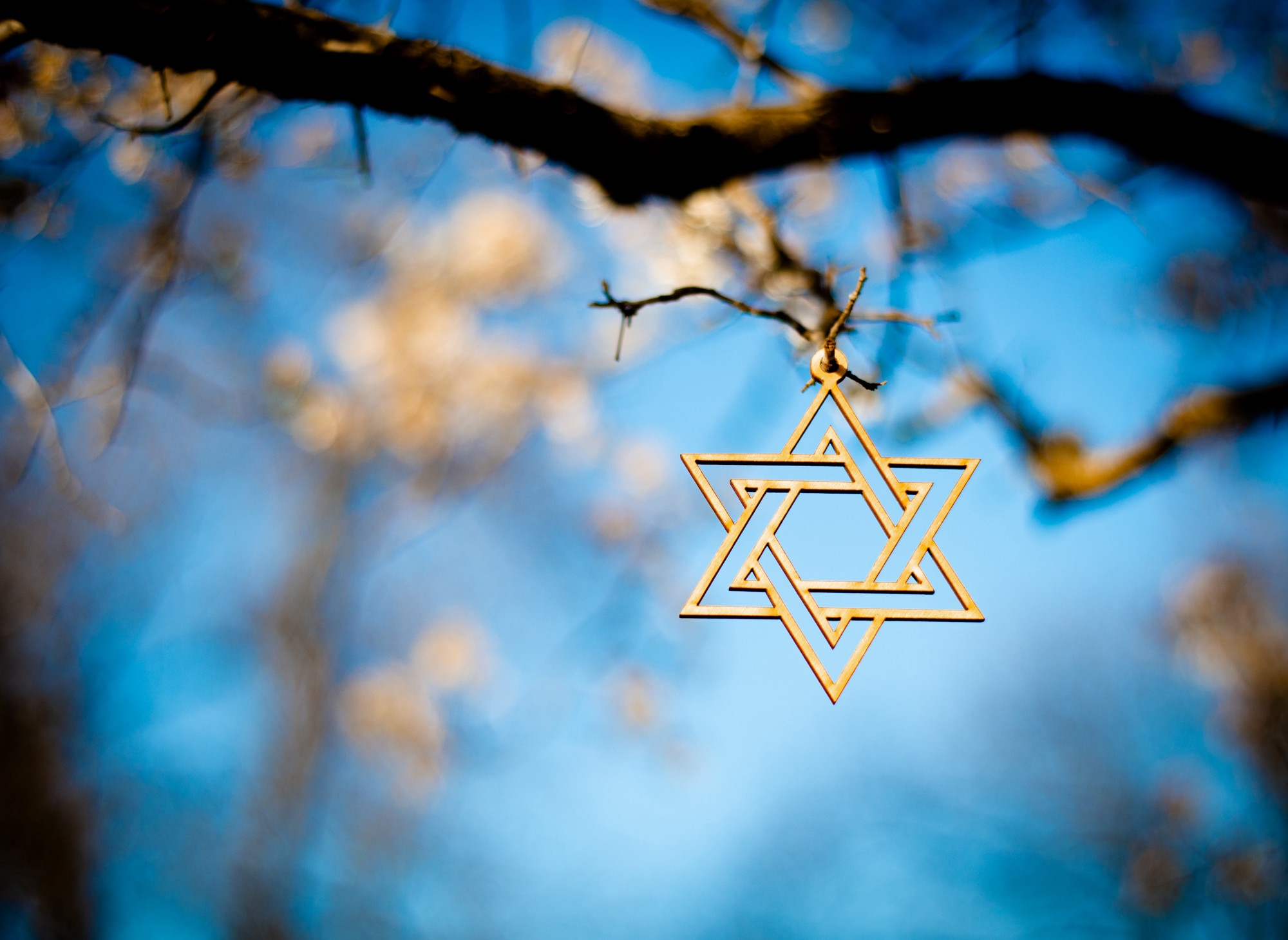 Gold star of David handing from a flowering tree just beginning to bloom