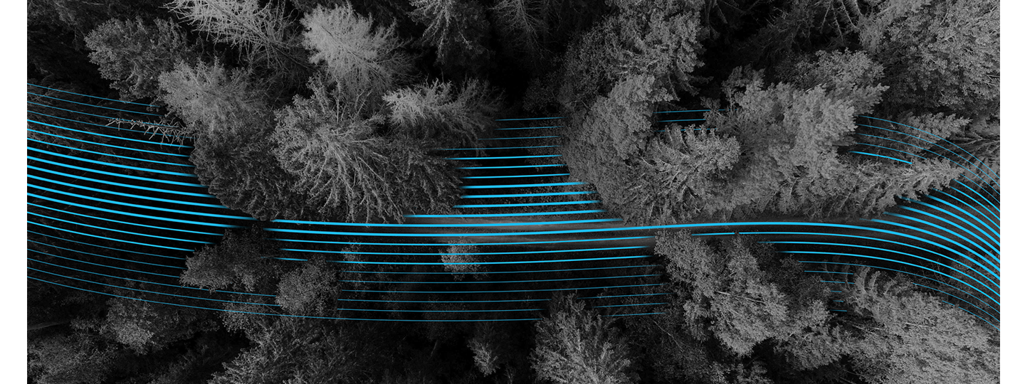 Aerial view of forest with lines flowing through being hidden at times by the trees