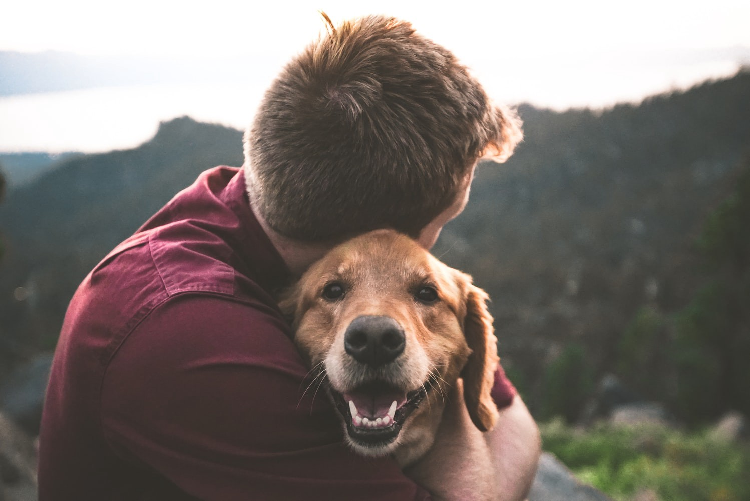 Man hugging a dog.