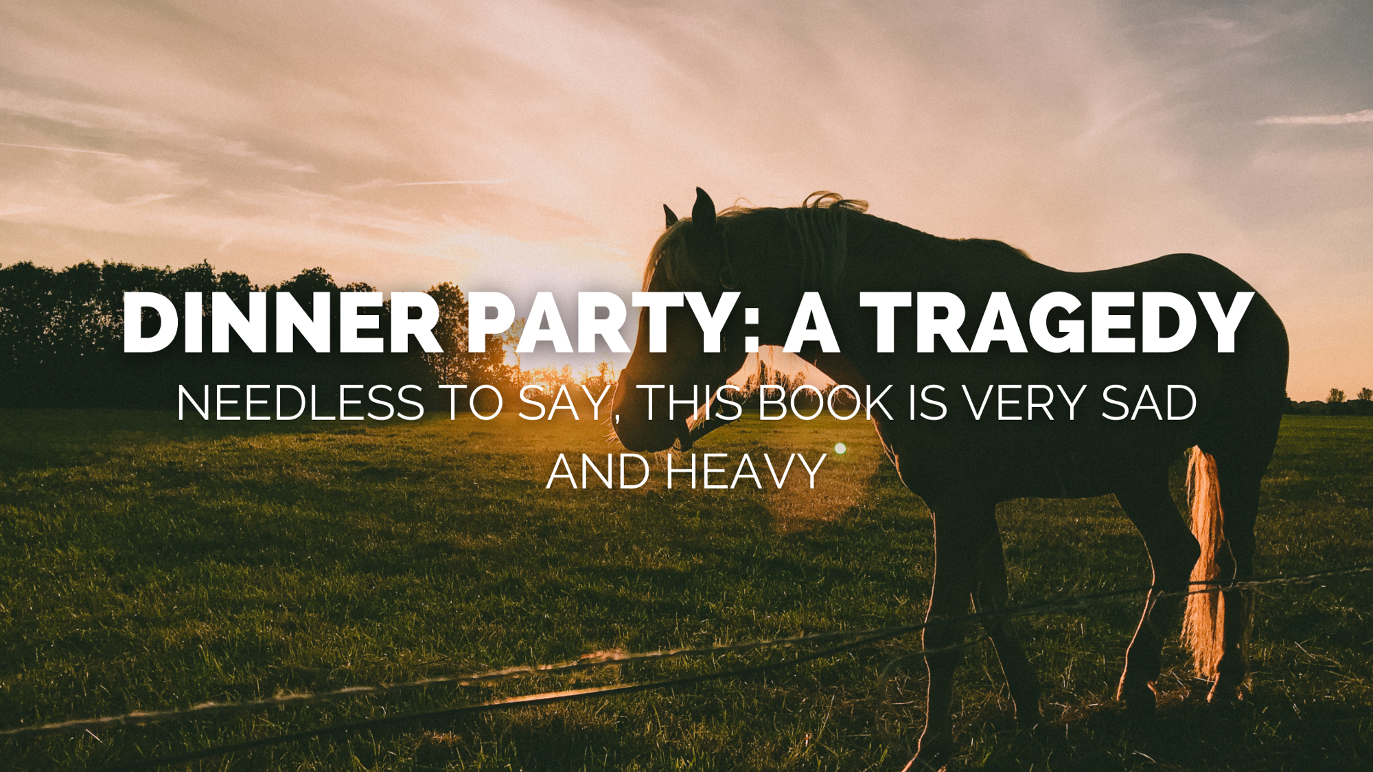Dinner Party: A Tragedy. Needless to say, this book is very sad and heavy.