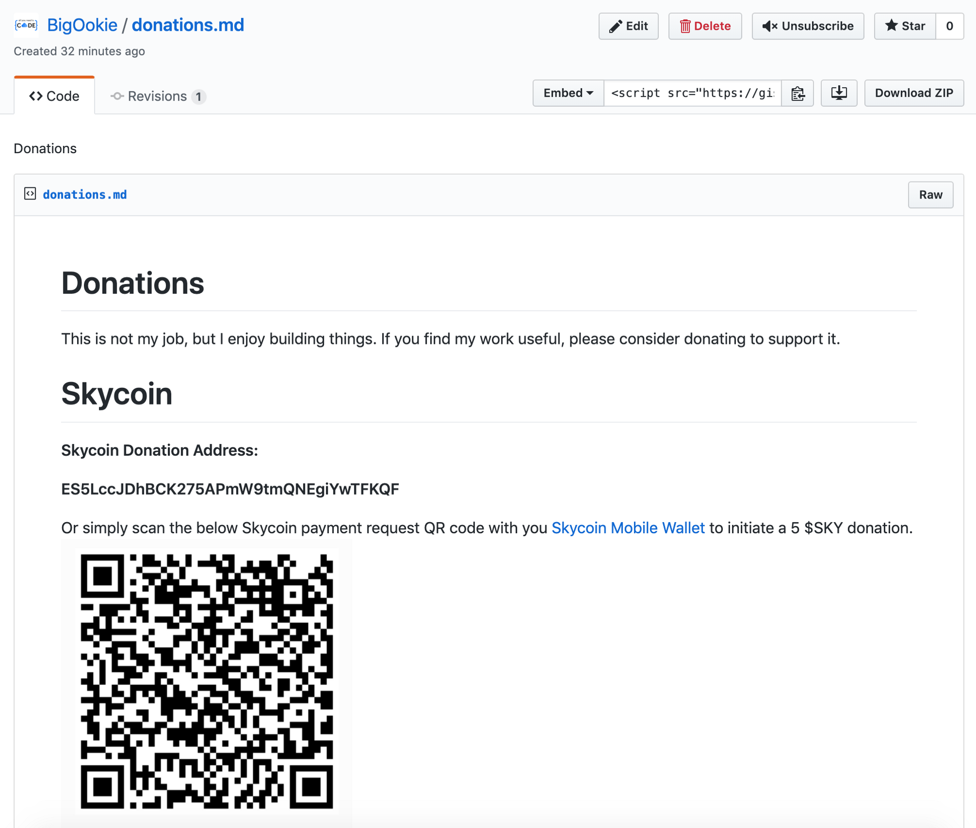How to accept Skycoin donations on GitHub - Skyfleet