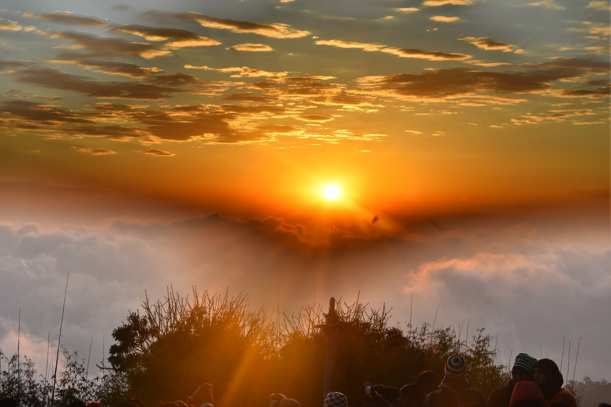 A sunrise over clouds and tree tops.