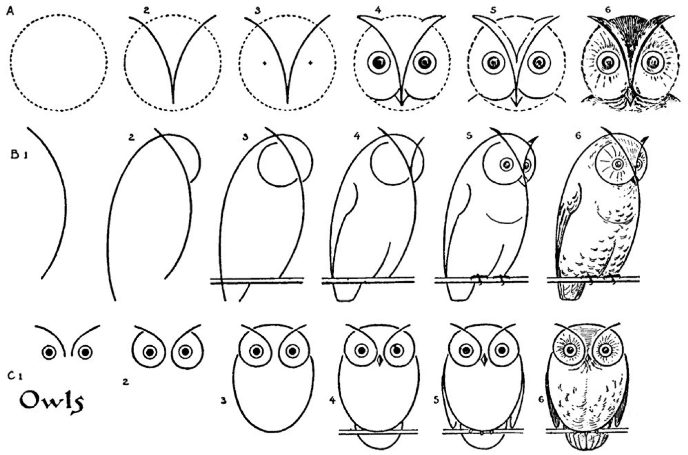 Tutorial on on how to draw an owl: step-by-step