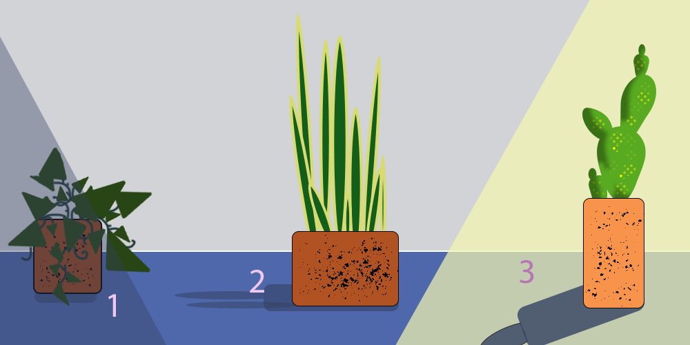 A crude, two-dimensional chart for plants and sunlight ...