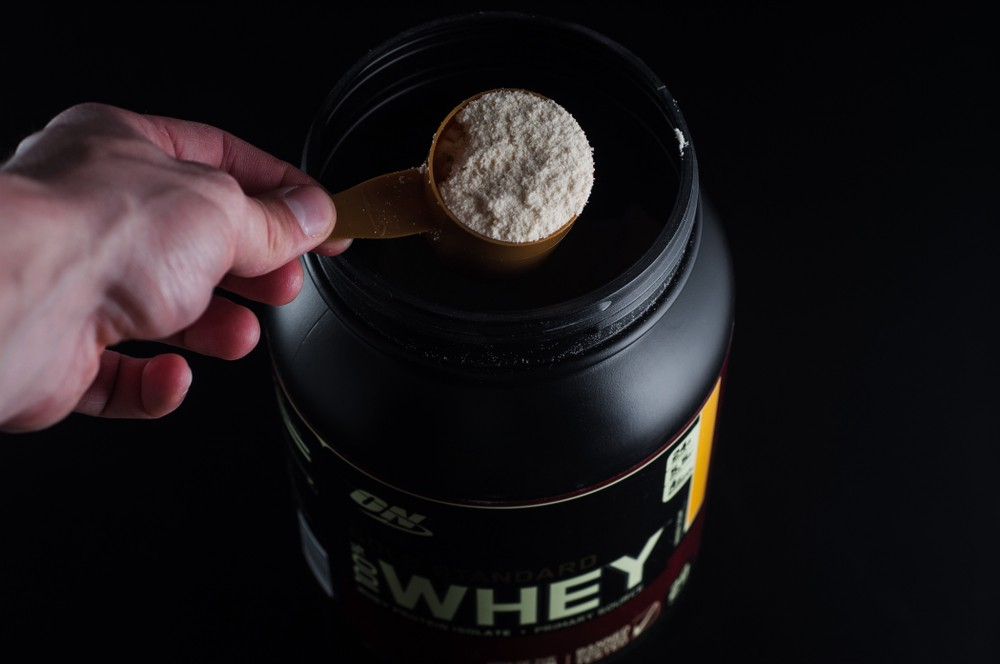 A scoop full of Gold Standard whey protein powder out of a tub.