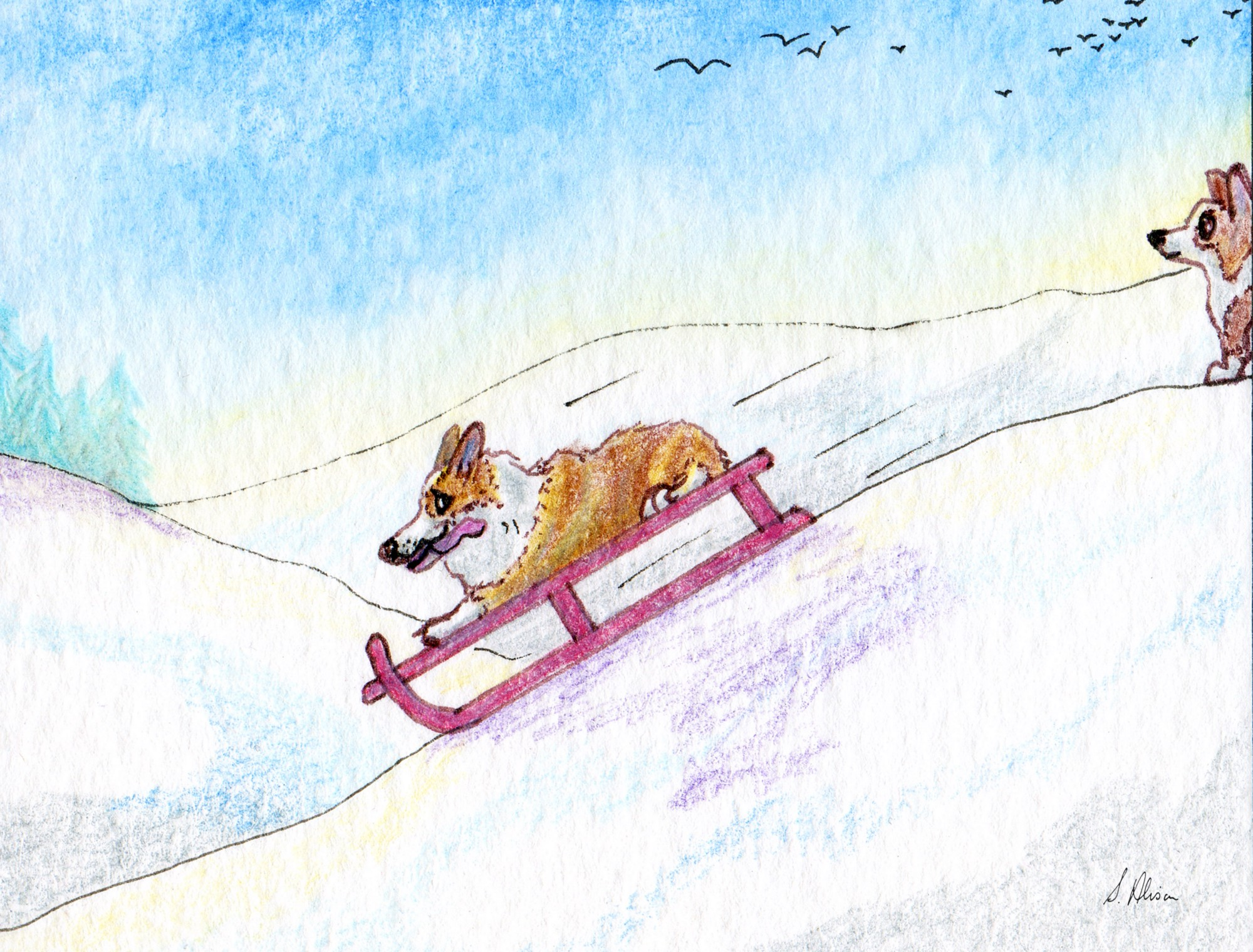A dog is tobogganing down the slope with another dog watching.