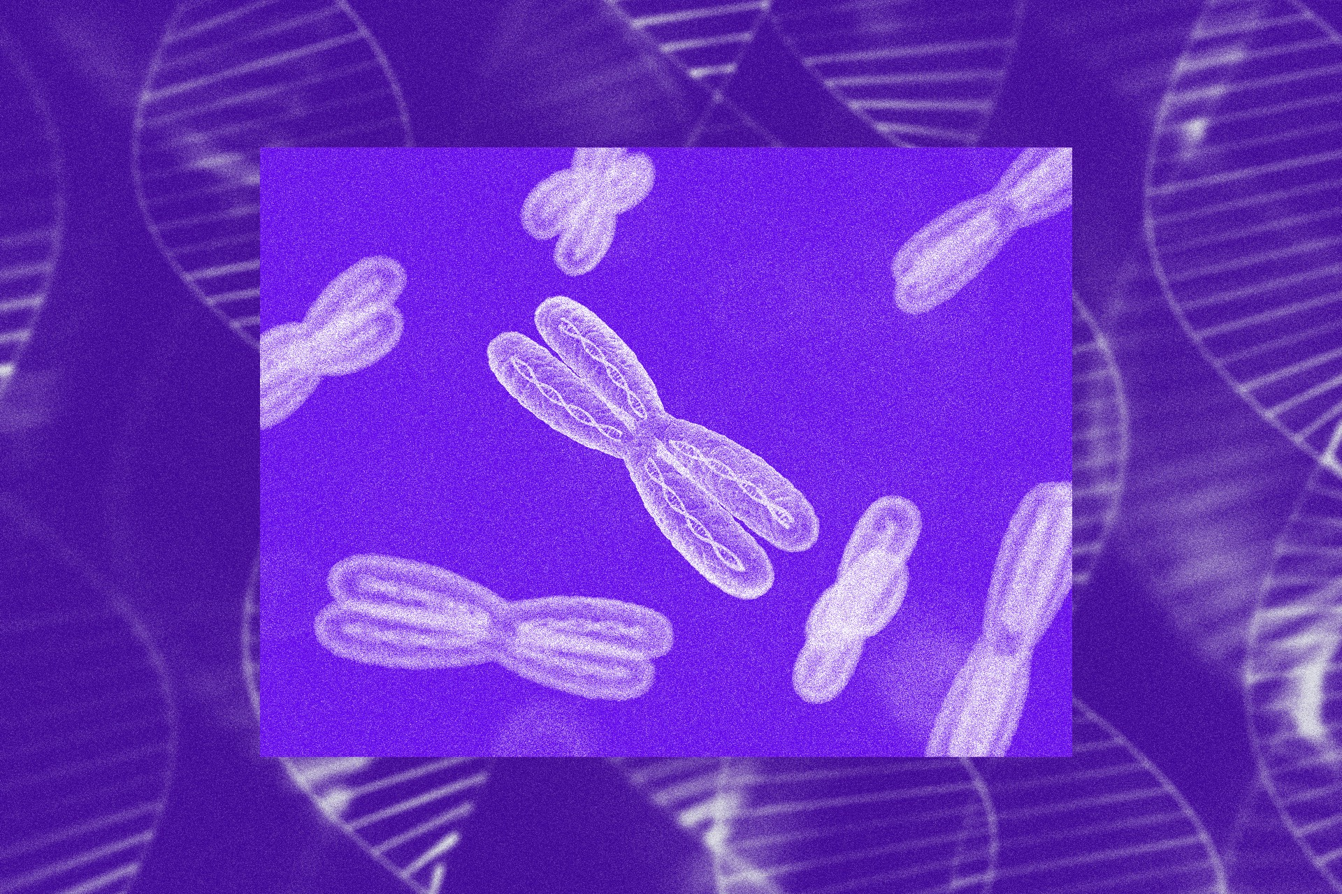 Photo illustration of X chromosomes against a background of wispy DNA helices.