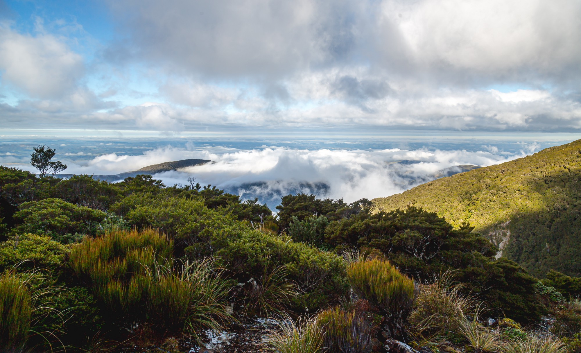 View from hill over clouds