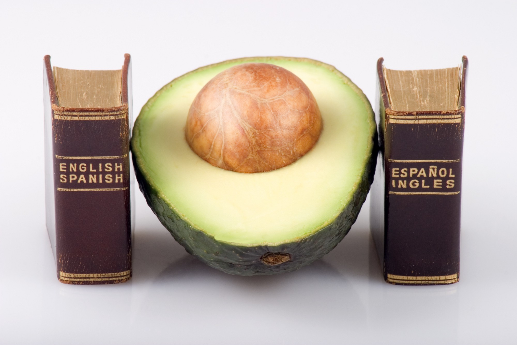 Half an avocado with seed sits between two miniature translation dictionaries