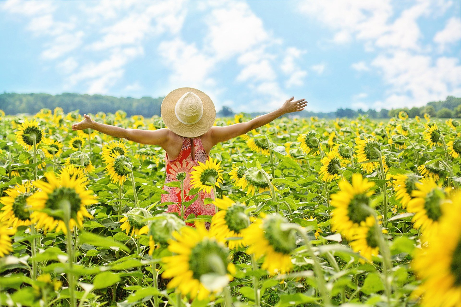 Woman standing in a field of sunflowers with arms upraised in celebration for a great event that happened in her life in 2019