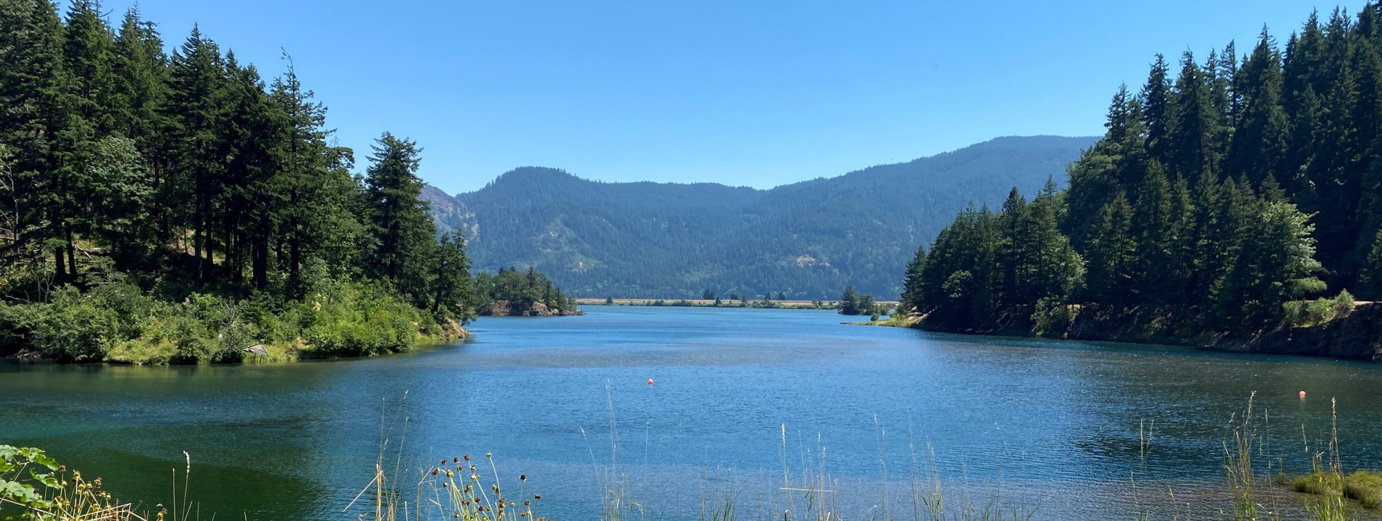 The Little White Salmon River flows into Drano Lake. The lake then drains into the Columbia River, which is just behind the elevated roadway at the center of the photo. Photo by Brent Lawrence / USFWS