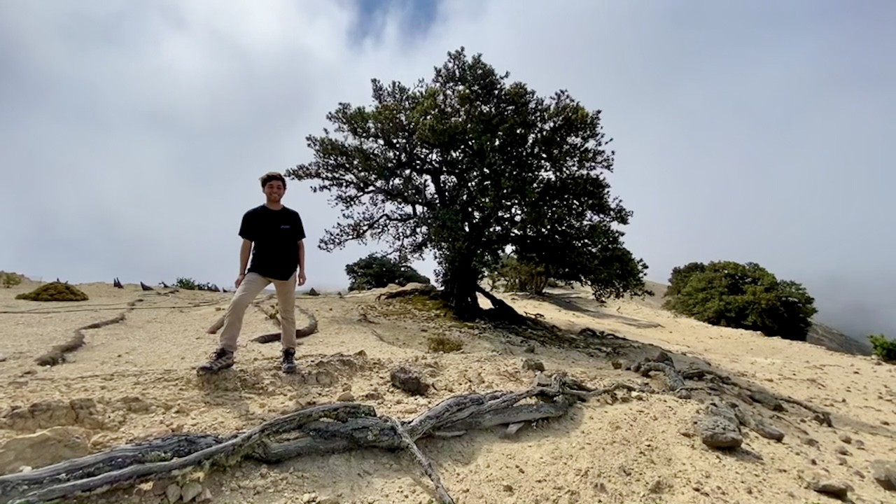 Daniel standing on a sandy ledge next to a tree