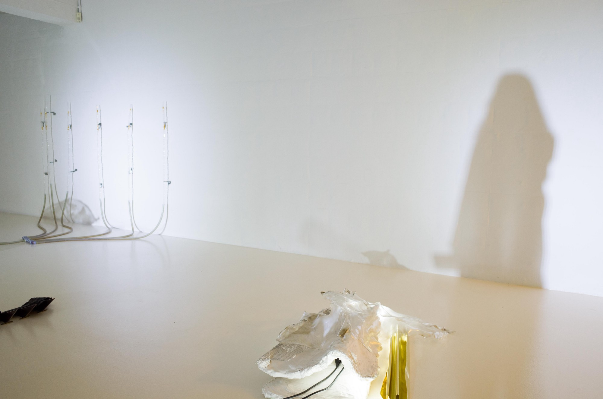 My shadow on a blank white wall of an art installation.