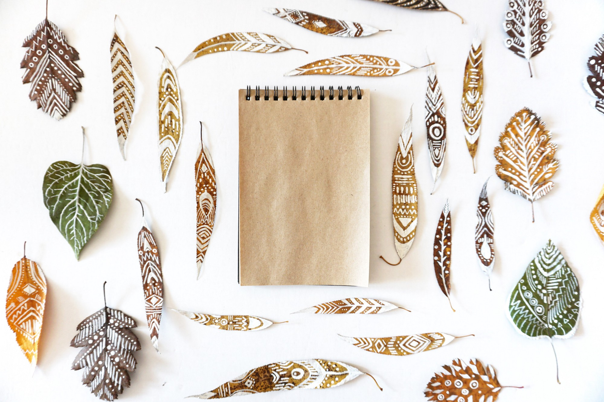 notepad surrounded by leaves and feathers