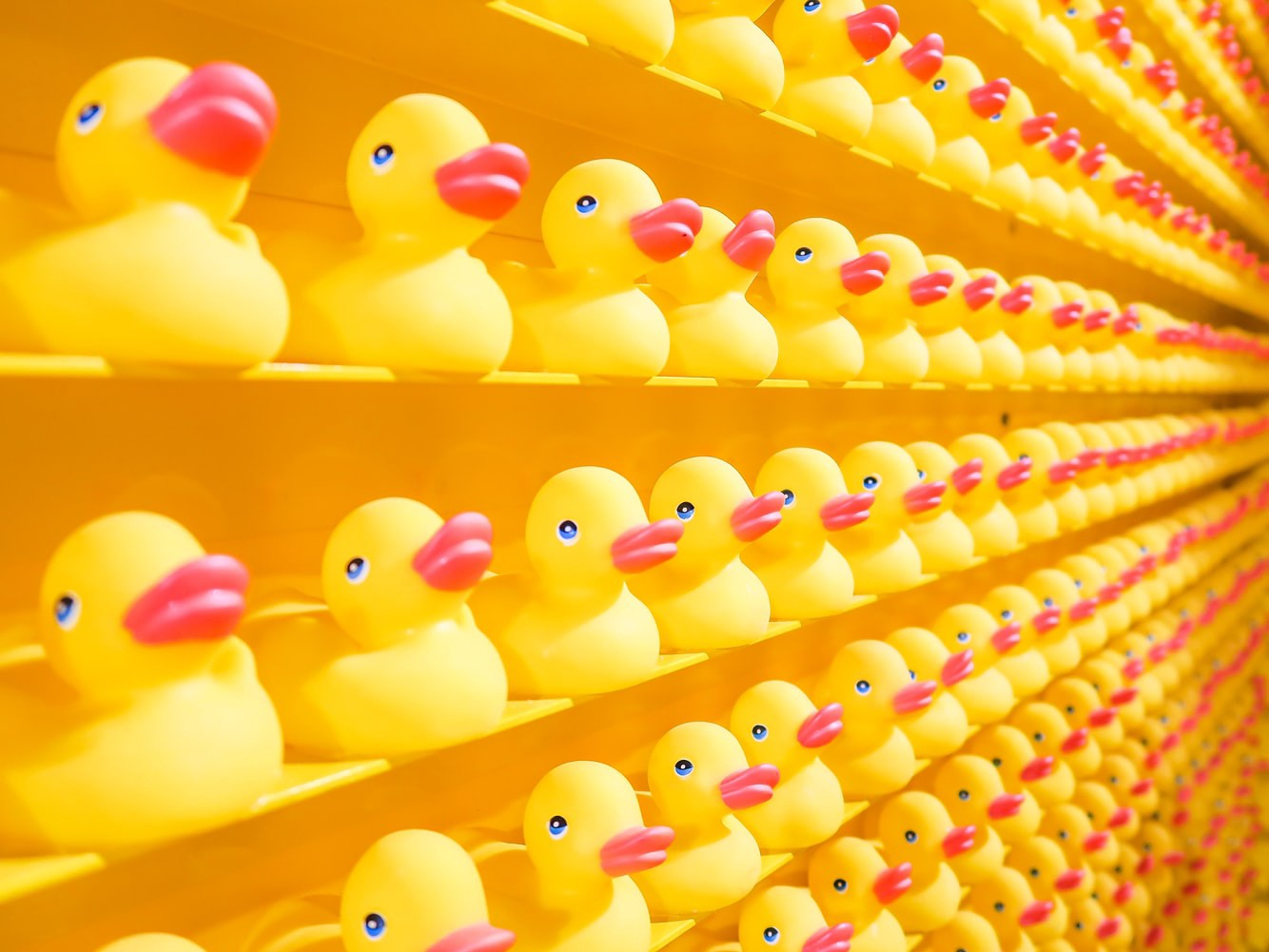 Yellow rubber ducks in rows on shelves.
