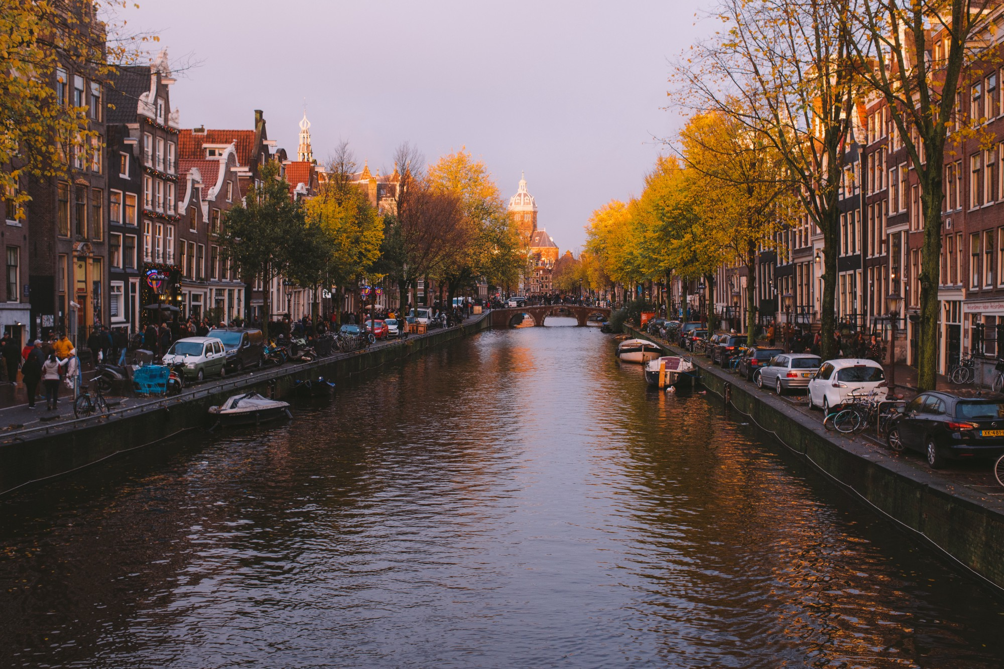 One of the many canals in Amsterdam lined with cars, gabled houses, and trees