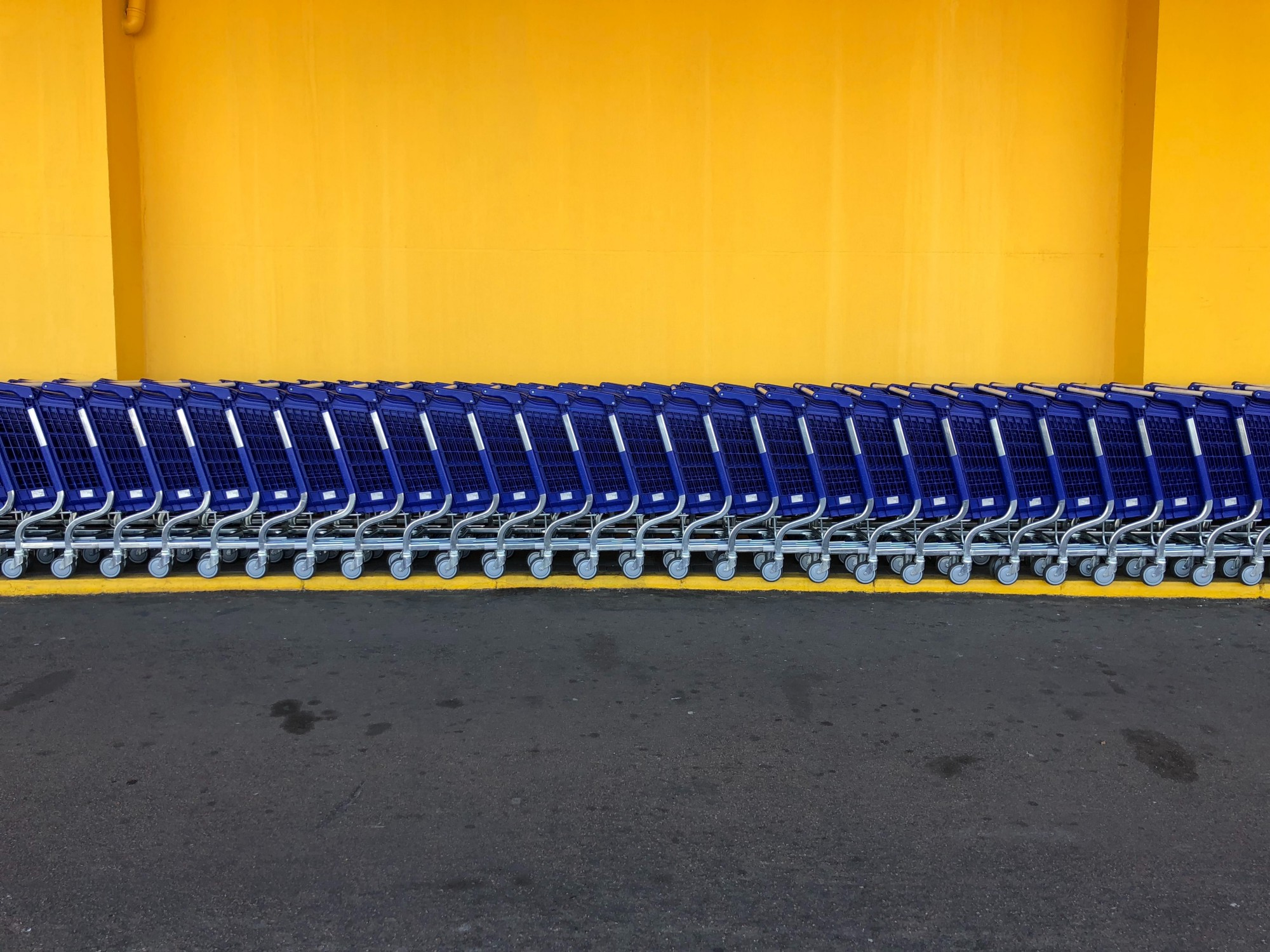 Beautifully composed photo of perfect line of blue, Walmart shopping carts against bright yellow wall.