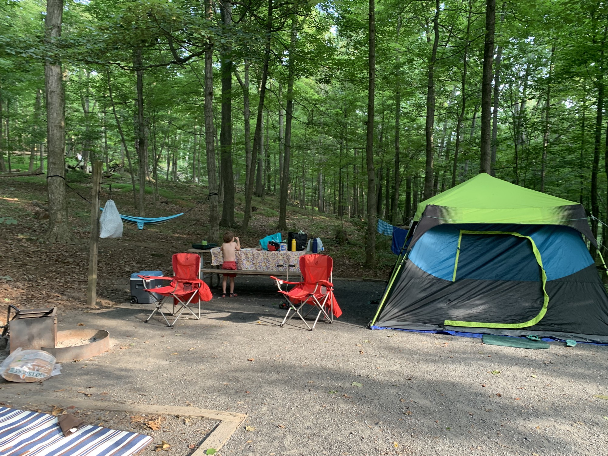 A camp site with a tent, picnic table, fire pit, hammock and other basics.