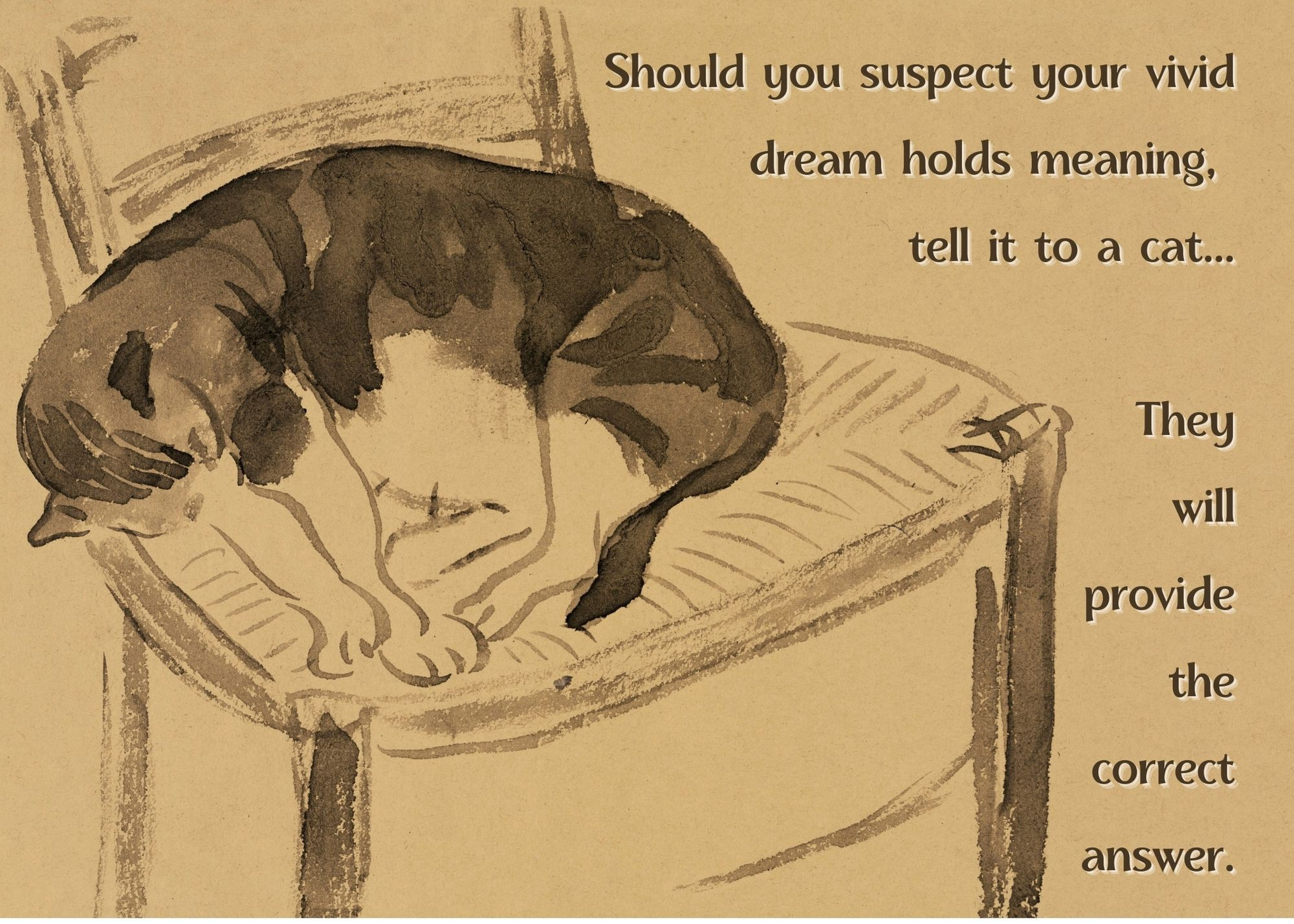 A beautiful ink sketch-type illustration of a cat in a chair with the aphorism below typed next to the cat.
