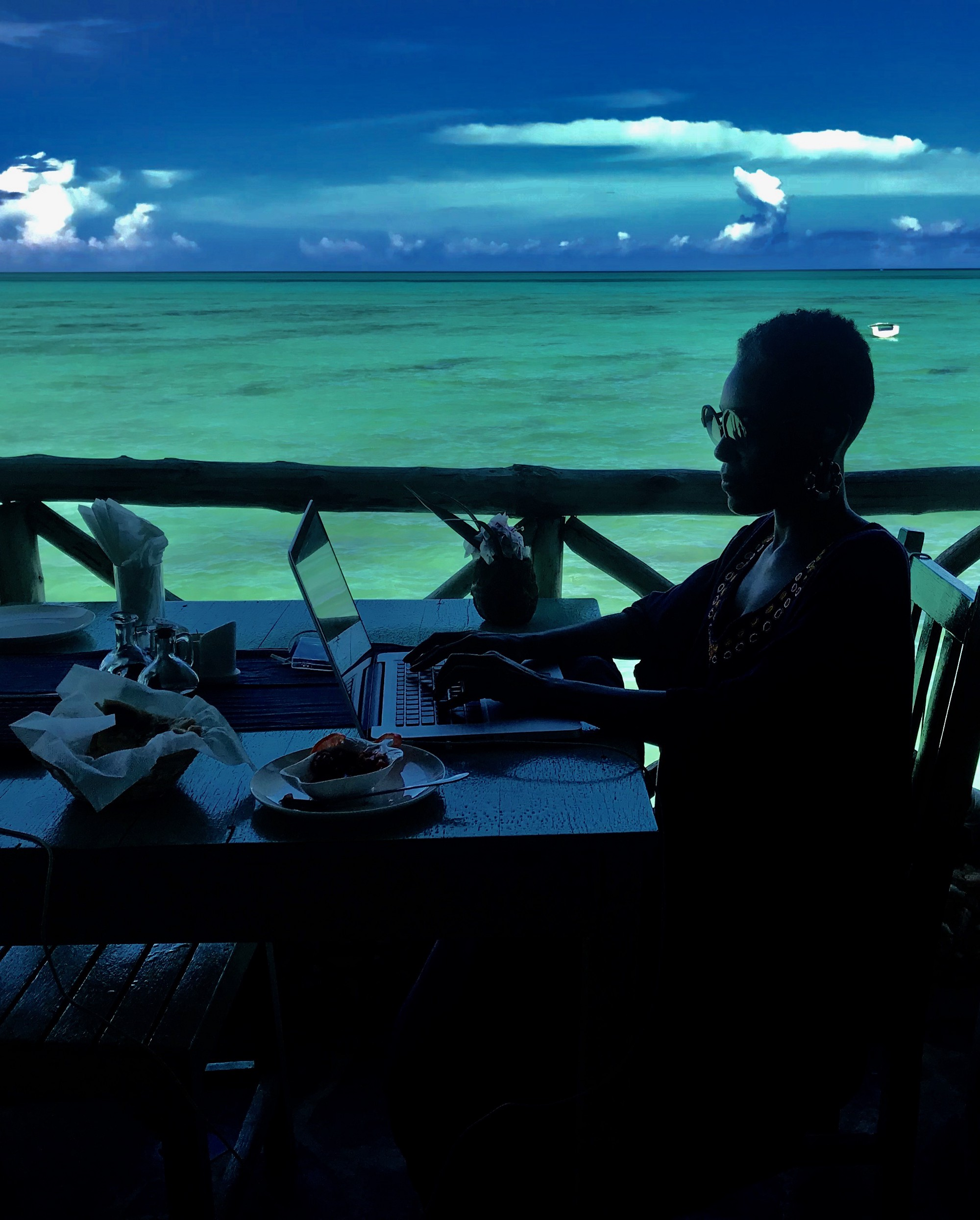 Photo of the author working on her laptop aloft the Indian Ocean.