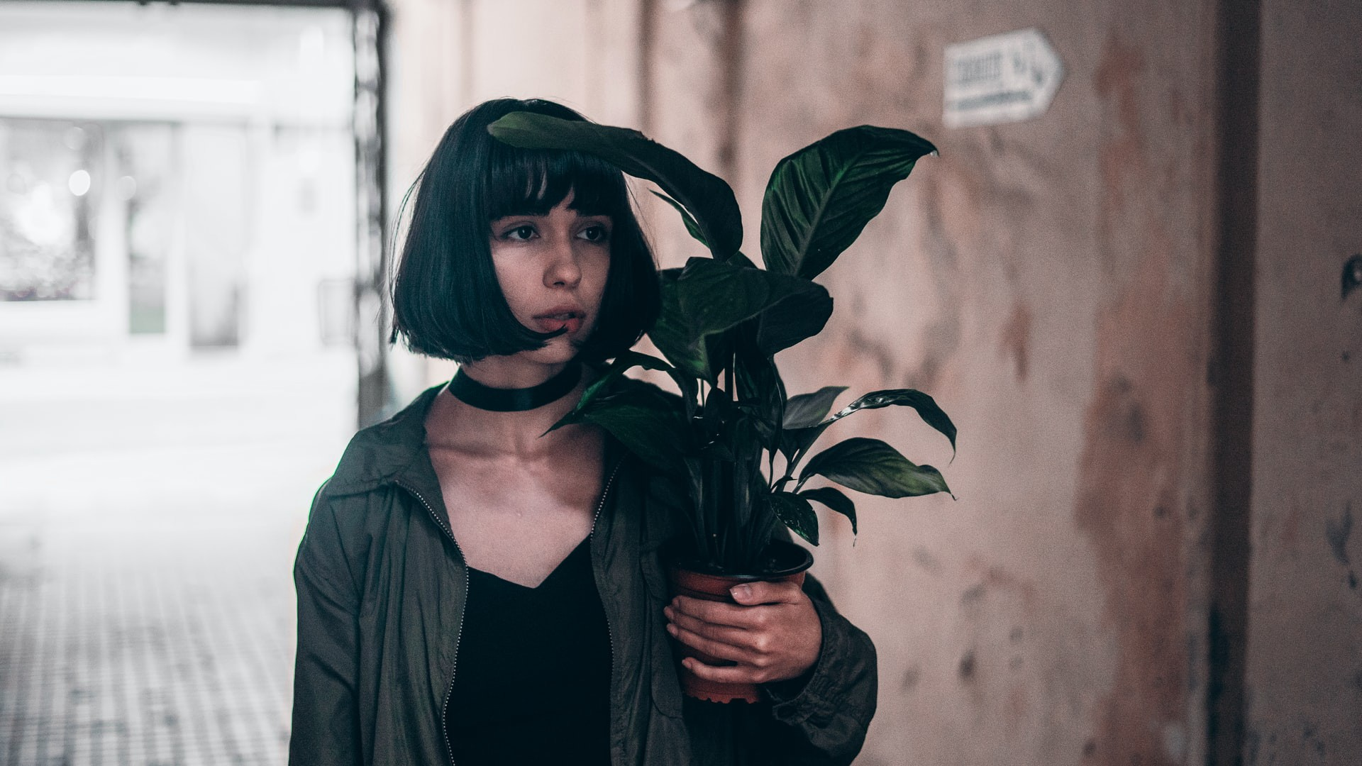 A black haired woman carrying around a potted plant.