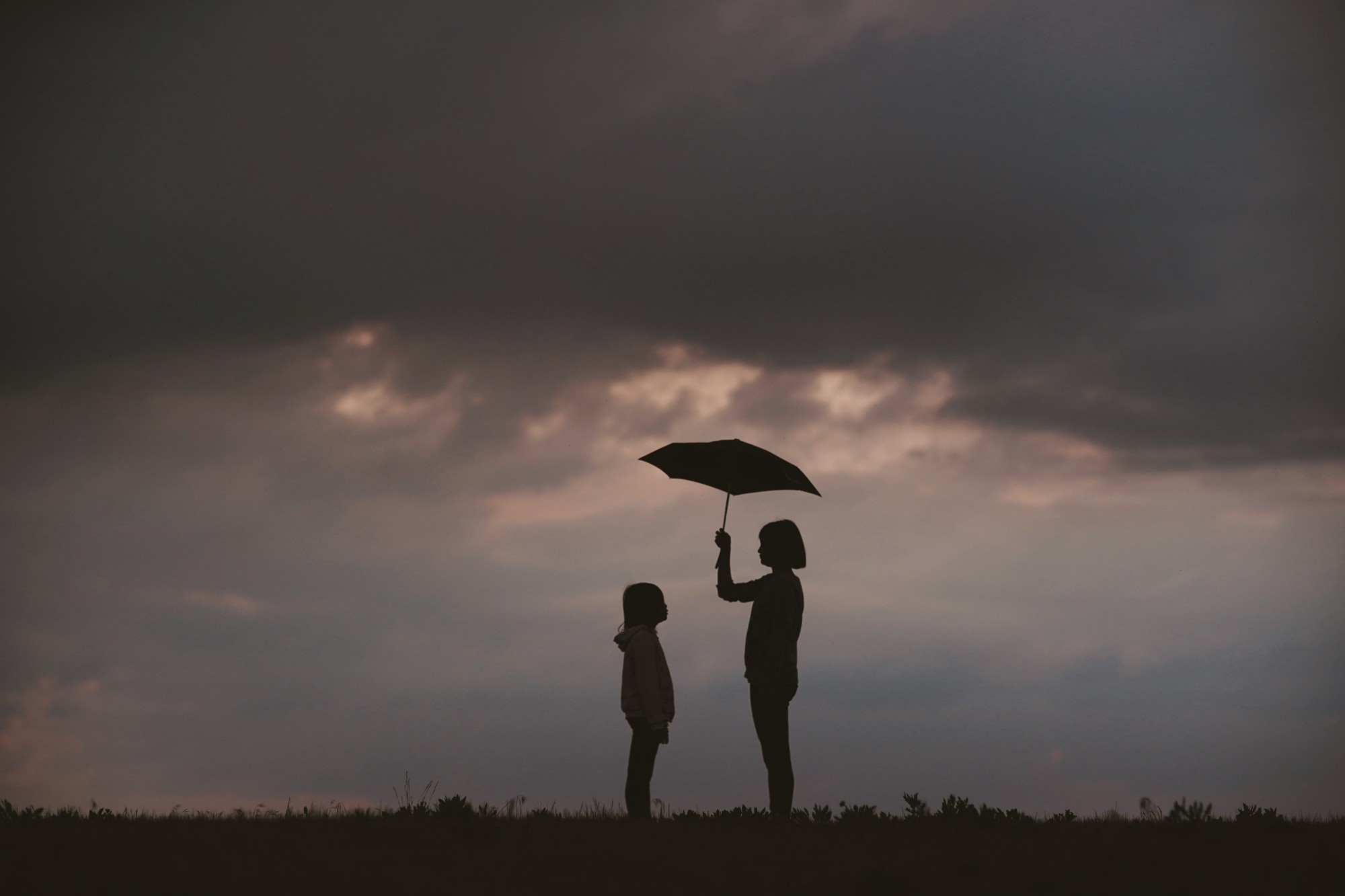 Person holding umbrella over child in a field on a stormy day