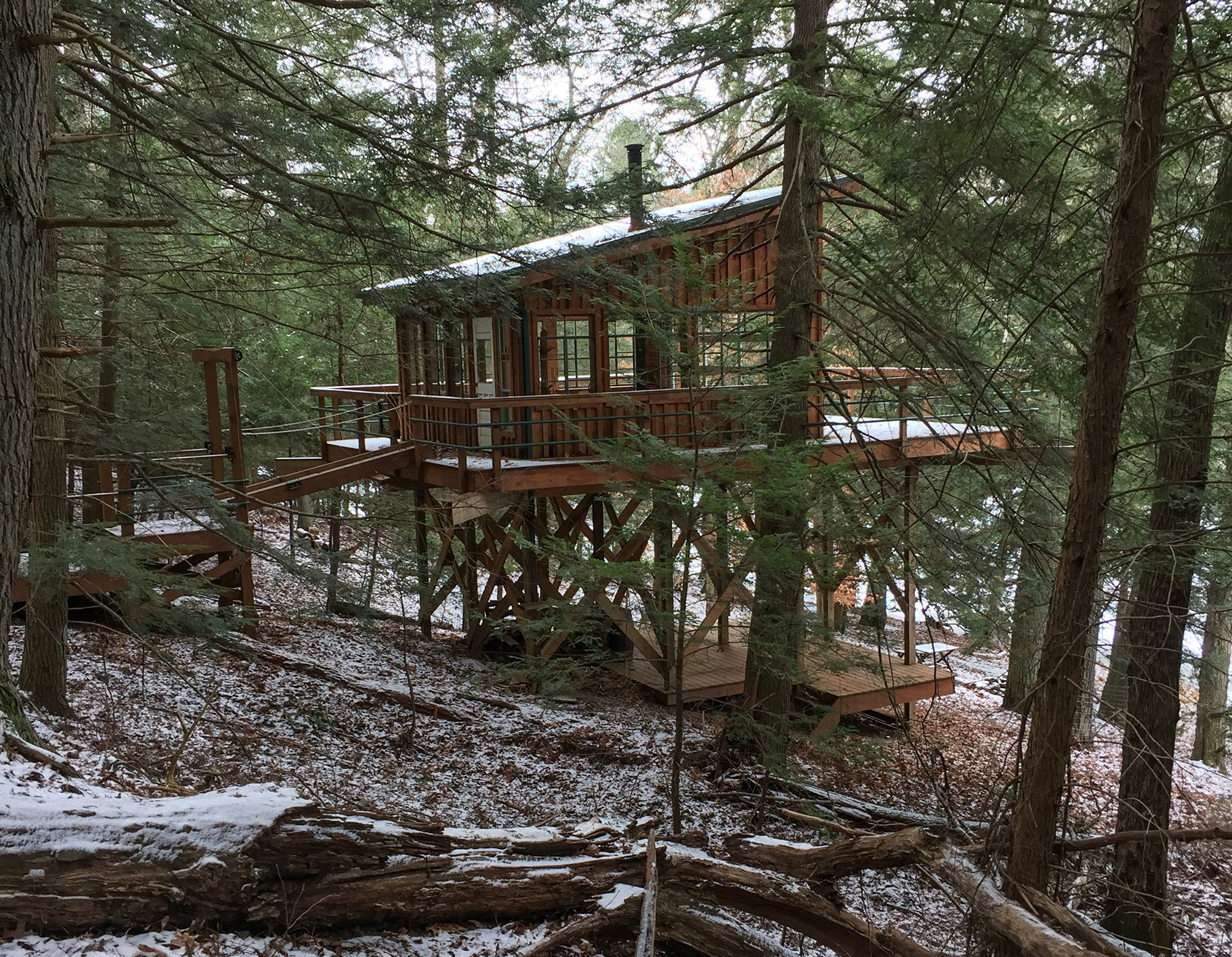 A small cabin built on a tower with a drawbridge in the woods.