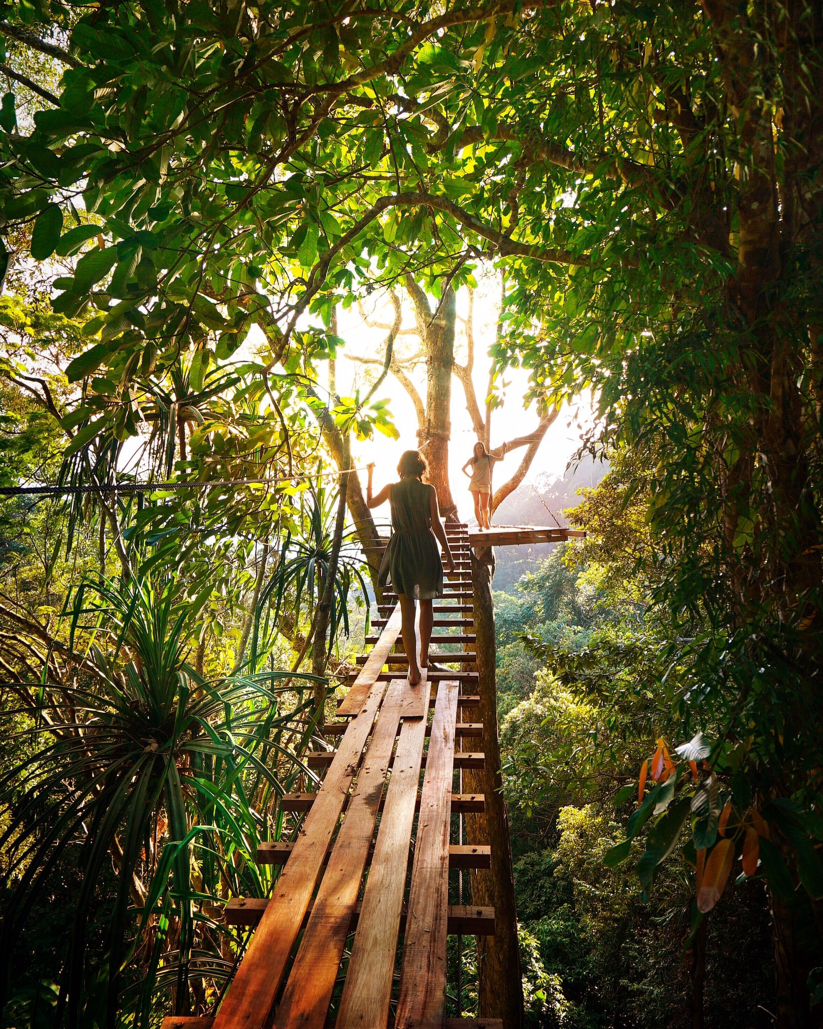 Women walk a wooden planked bridge high up in the tree tops of the jungle.