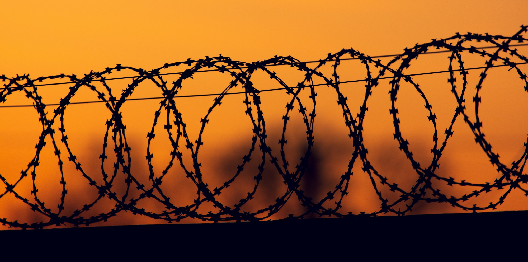 image of barbed wire coils in the sunset