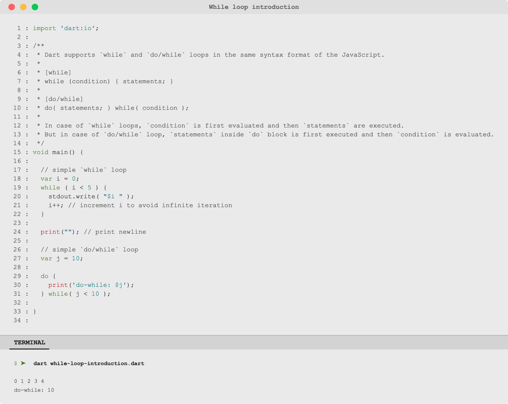 🎯 Dart DartLang Introduction while and do while loops   by ...