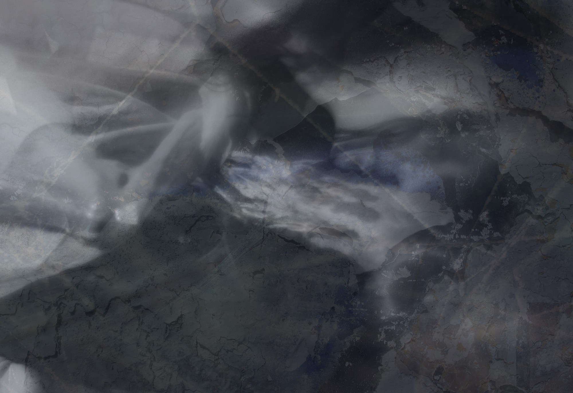 Abstract, textured image that includes a woman's profile and bone-like structures in a muted palette of black, gray and blue.