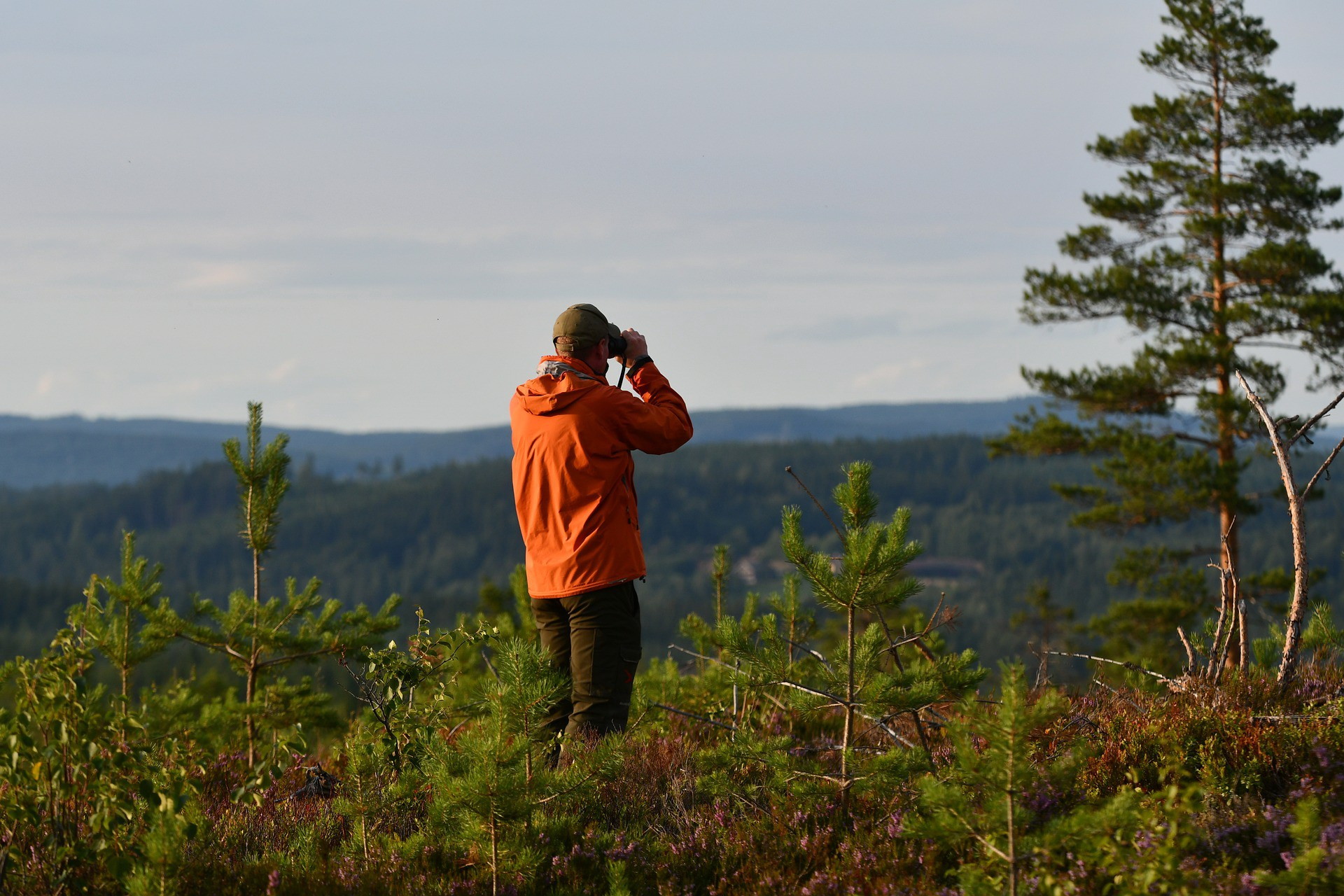 A scout in action, watching afar with binoculars.