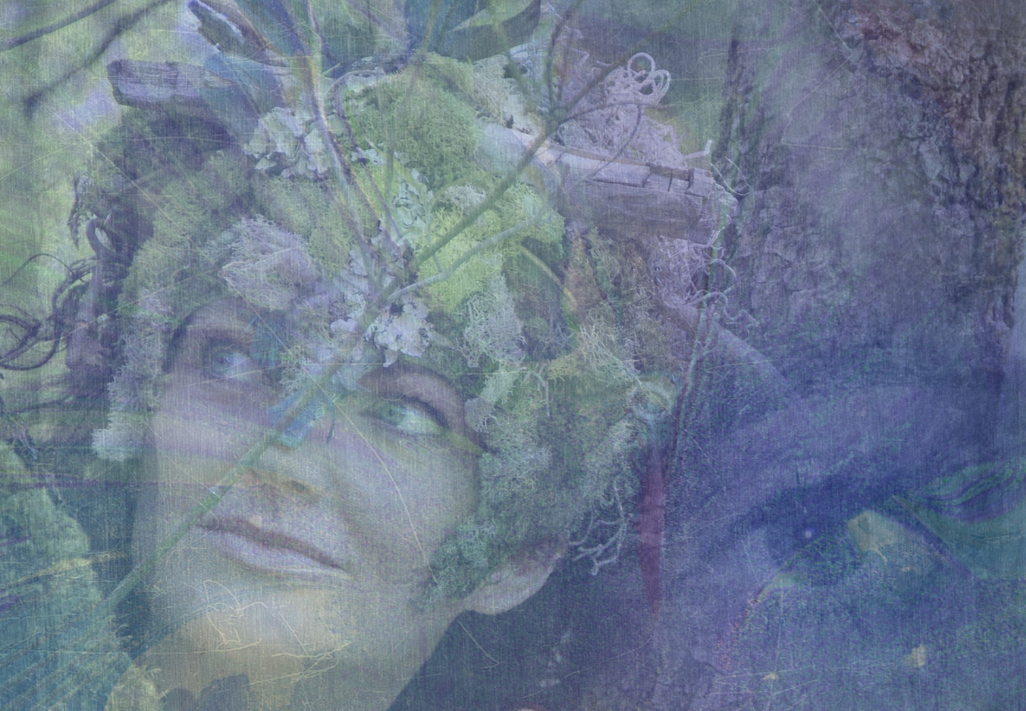 Composite image of a woman's face adorned by moss, bark and twigs in a muted palette of pastel greens, purples and blues.