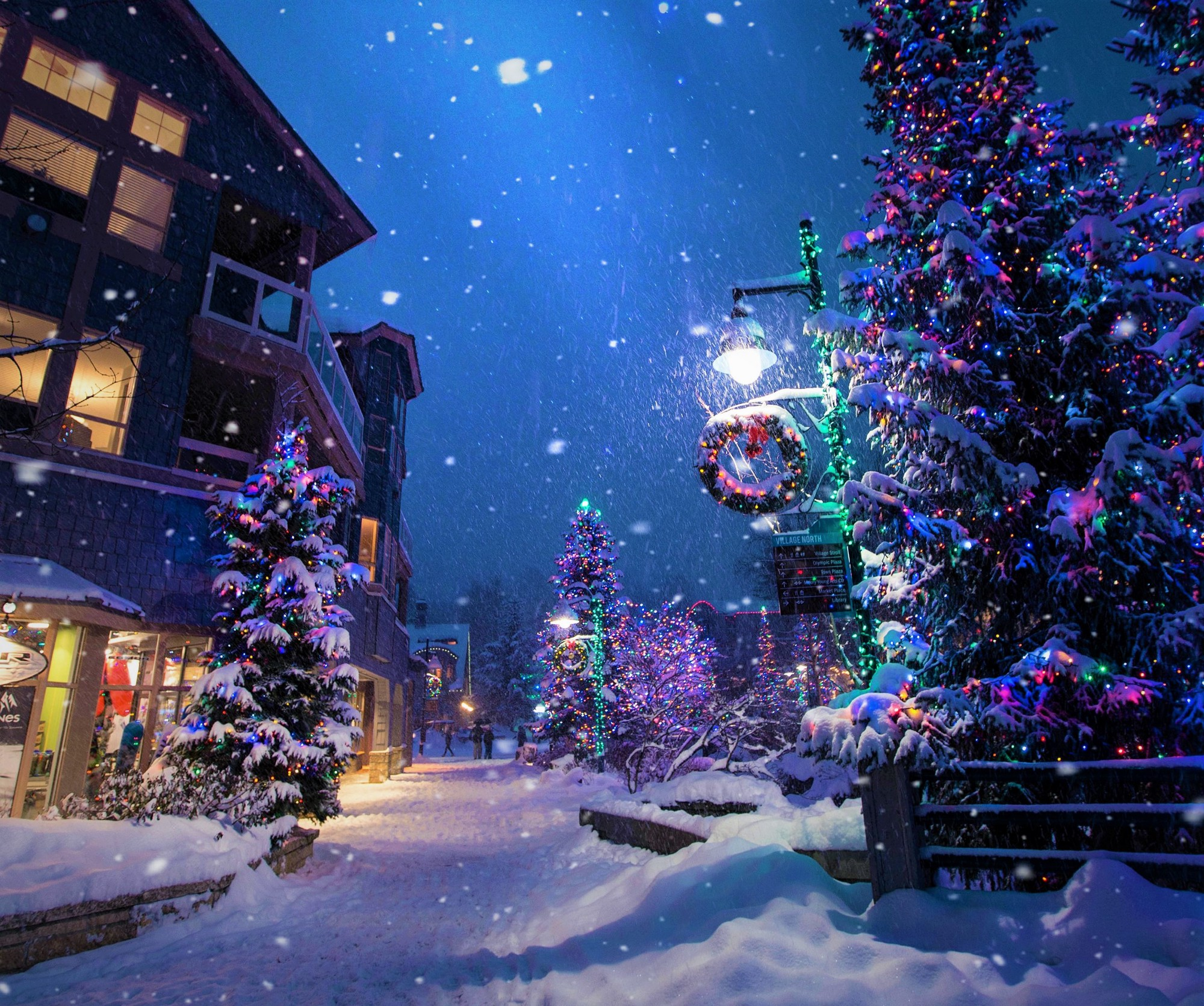 night-time outdoor holiday scene snowing street lighted trees