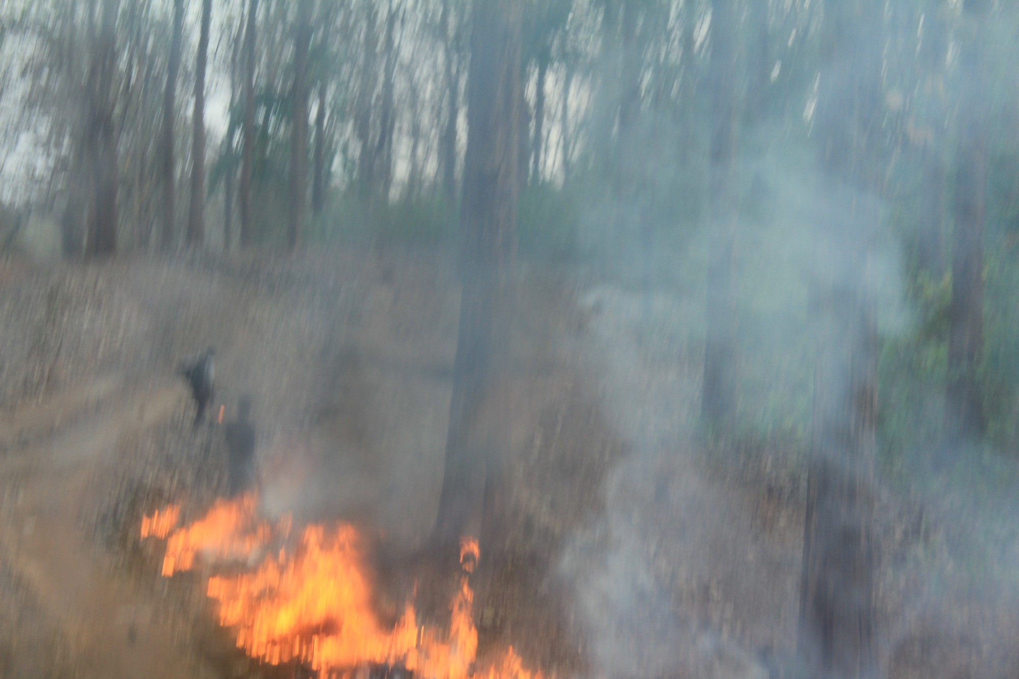 A blurred image of burning pyre and smoke. Some blurred human figures in the background.