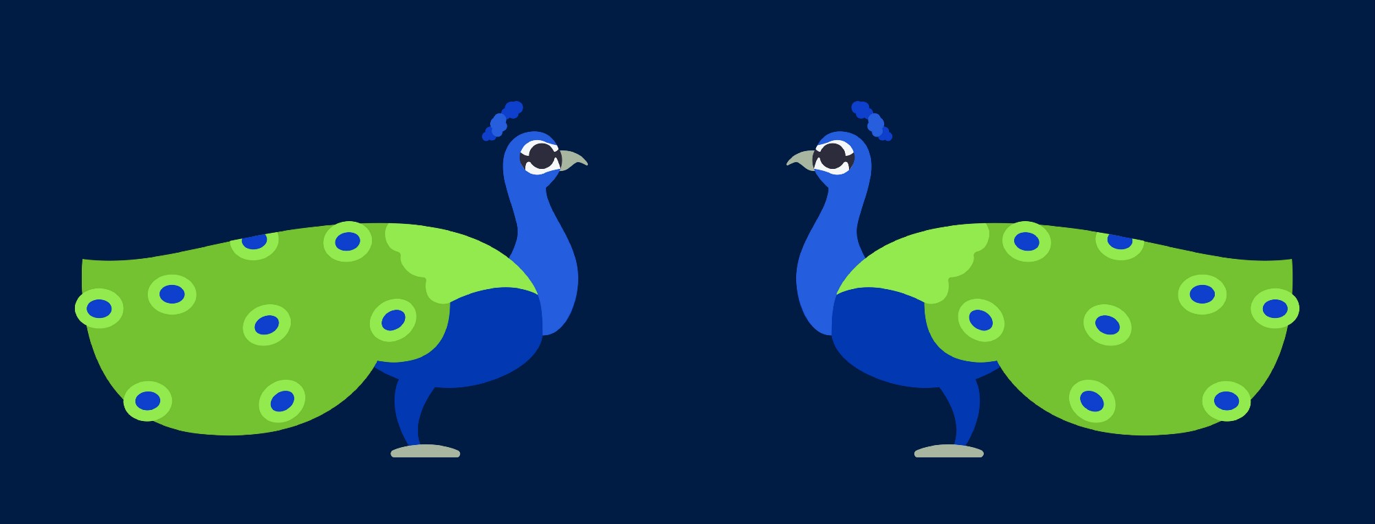 Two peacocks looking at each other… very ornamental.