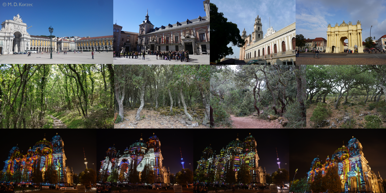 Similar images found within the test set, palaces, forest images and Cathedral in Berlin during the light festival