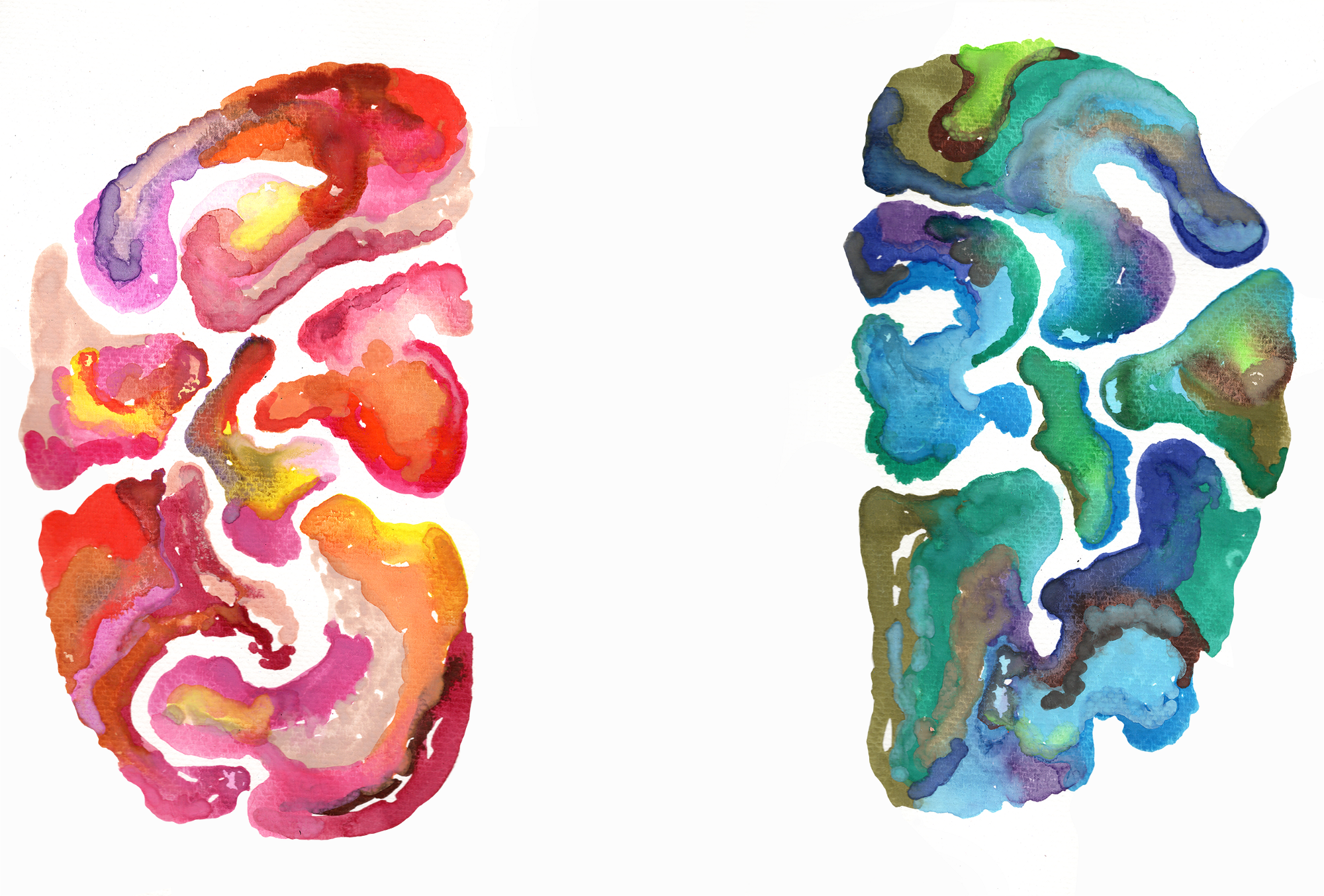 illustration—the creative side of the brain, is it right brain versus left brain