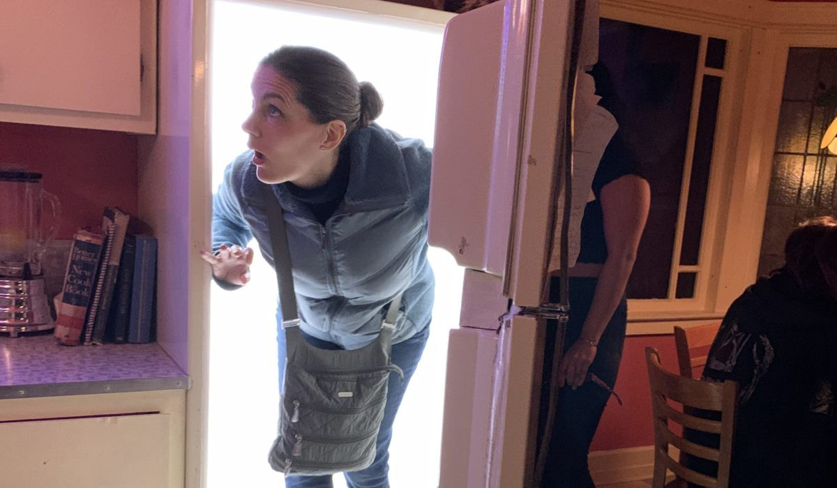 Lis coming out of the fridge at Meow Wolf