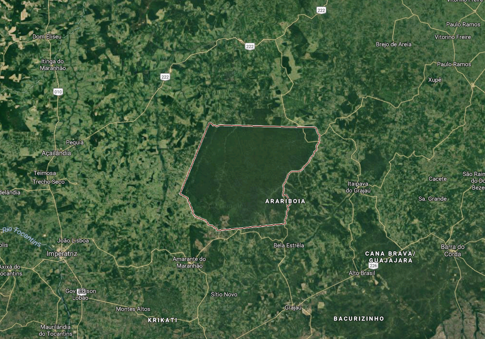 Satellite image of the Guajajara's territory, Araribóia, showing their land as an island of green in a sea of deforestation.