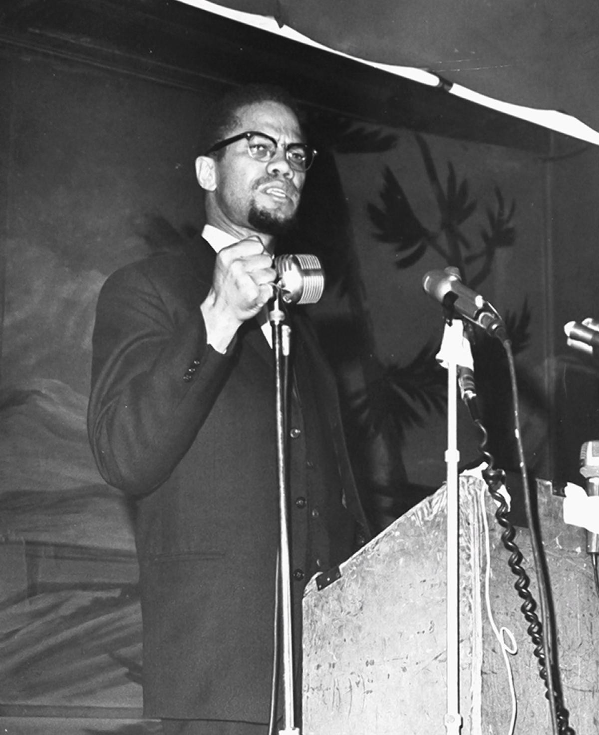 Malcolm X on Afro-American, African and International Solidarity