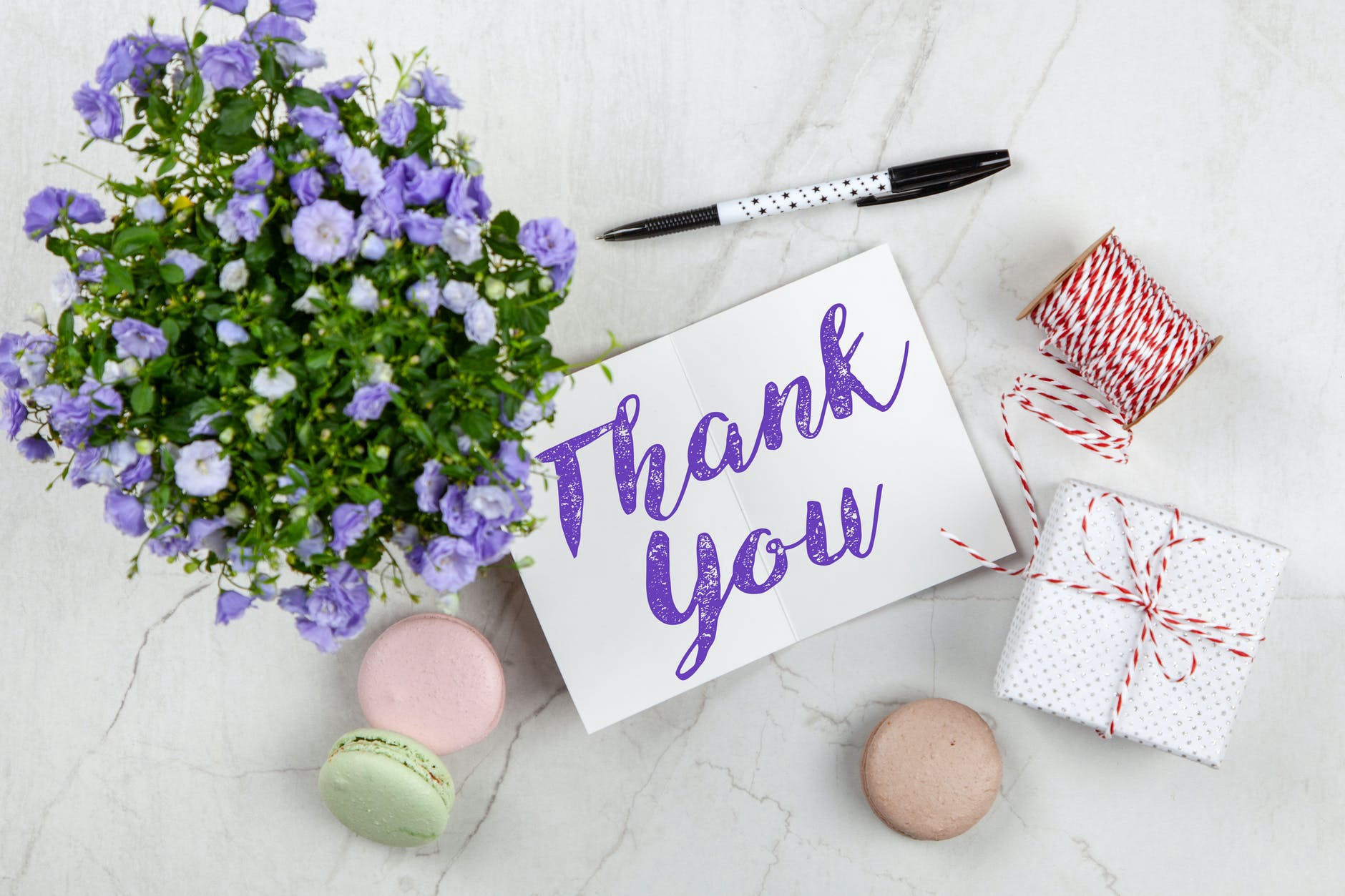 A purple-petaled flower and a beautiful thank you card