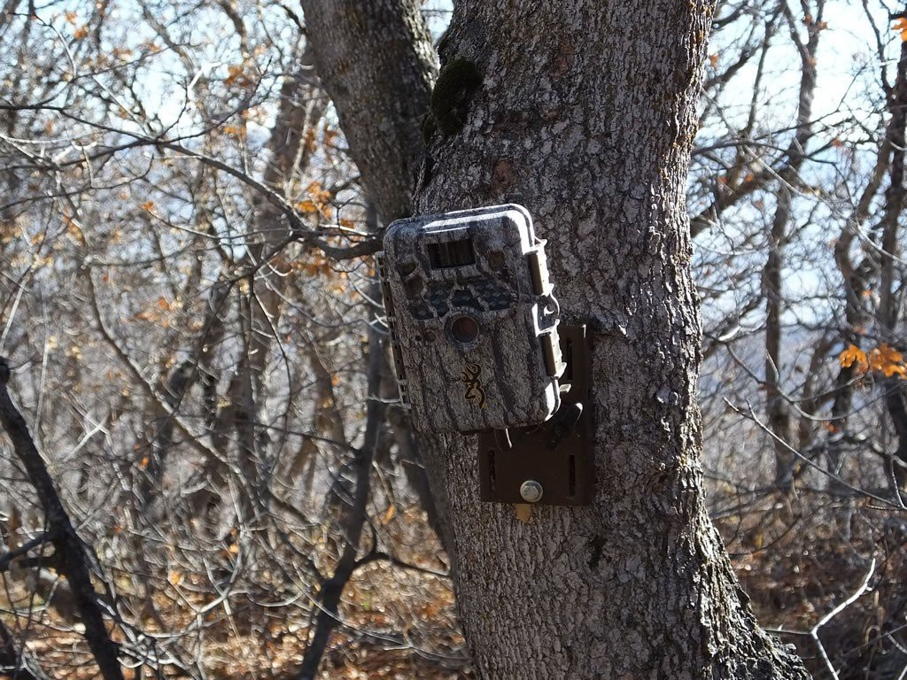 Camouflage a Game Camera