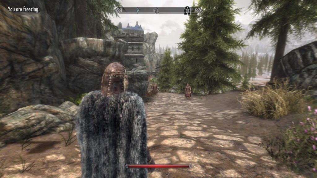 Dragonborn approaching Solitude with two guards standing in the distance.