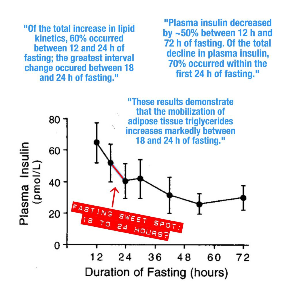 The Sweet Spot for Intermittent Fasting - Better Humans - Medium