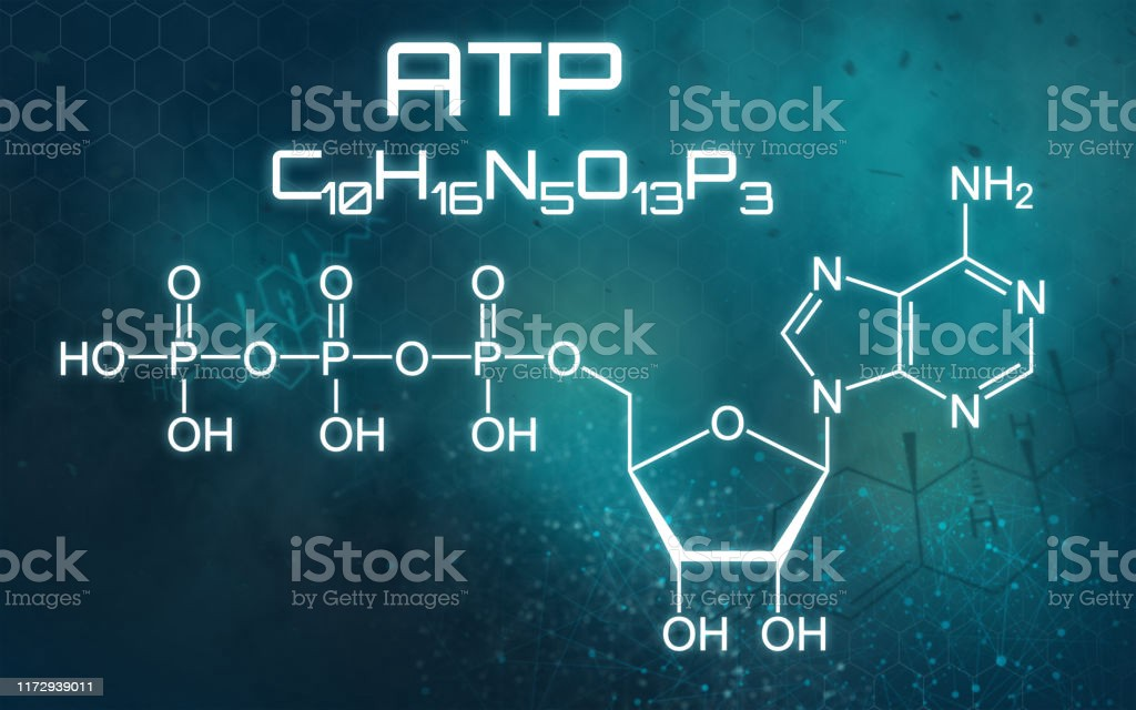 https://www.istockphoto.com/photo/chemical-formula-of-atp-on-a-futuristic-background-gm1172939011-325593924