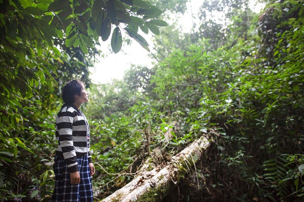 In Thailand, Karen is looking at the light above the trees, standing on a tree in the forest while she and her group are visiting the forest for their conservation class. She is wearing a blue and white striped shirt.