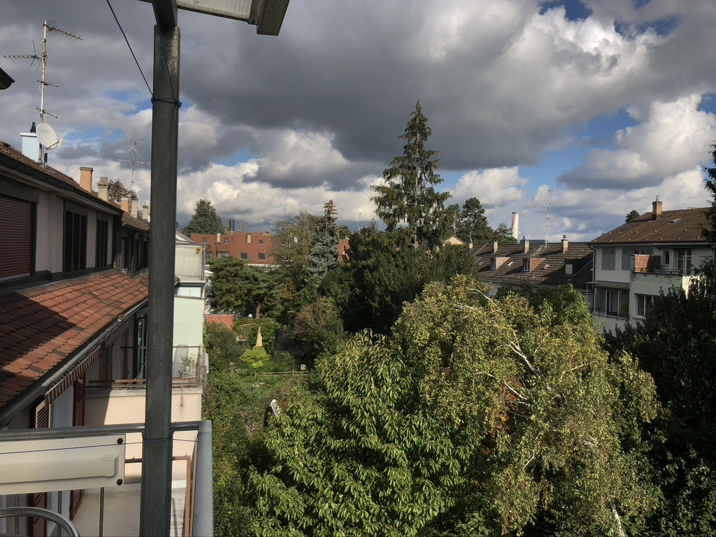 image out a balcony onto the backyards of swiss homes in basel