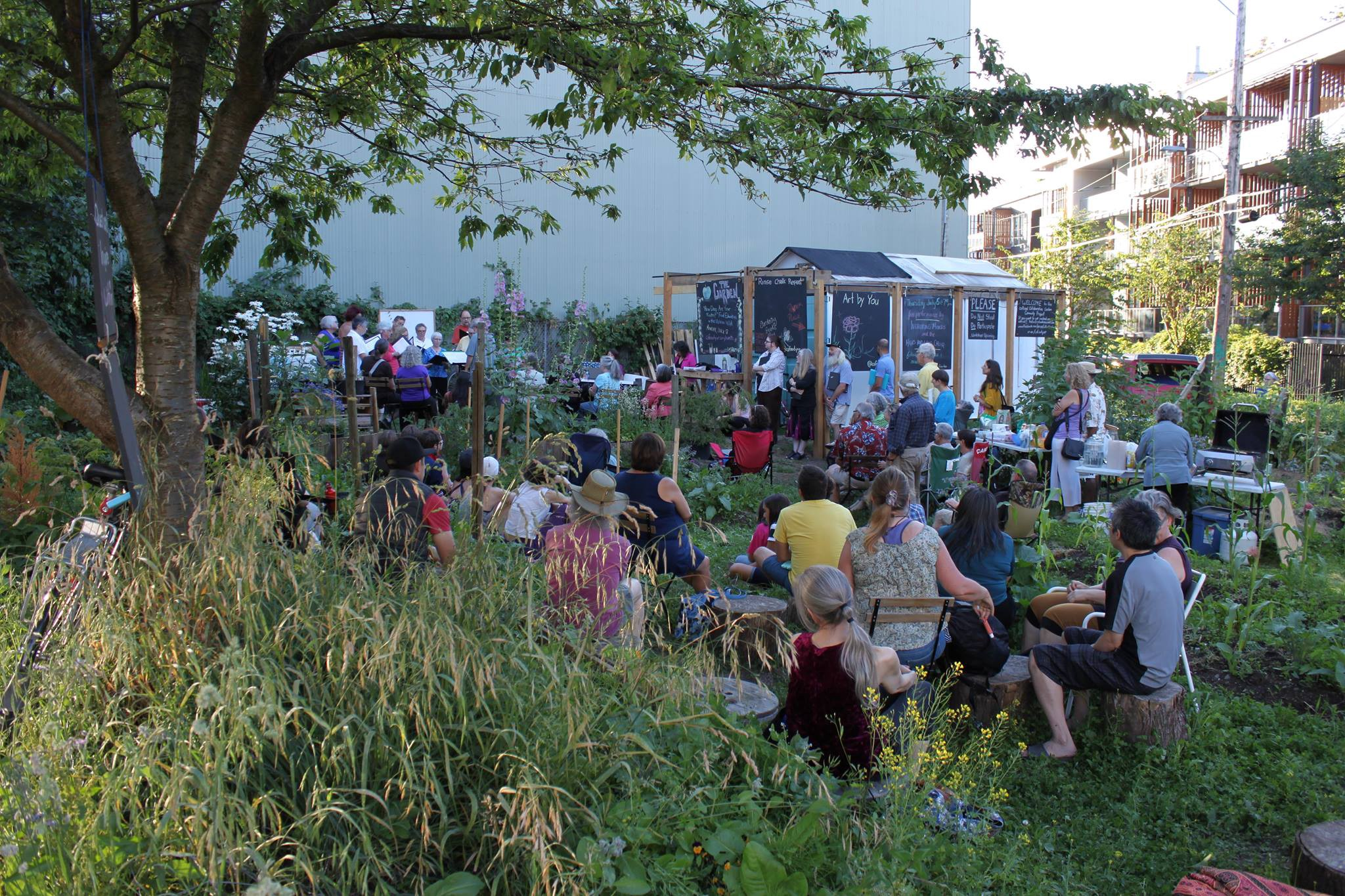Choirs performing in the collaborative garden